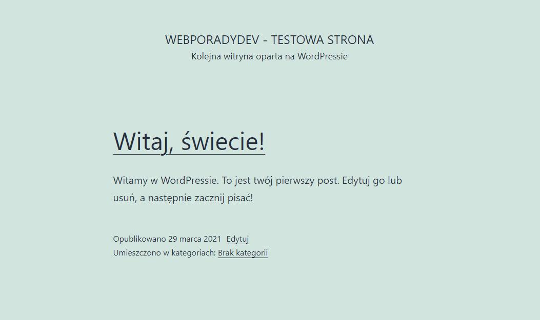 Strona na WordPress po instalacji